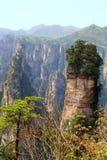 Zhangjiajie forntida berg. Fotografering för Bildbyråer