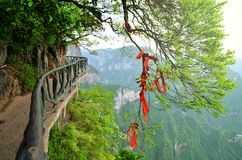 Zhangjiajie Kina - Maj 10, 2017: Detalj av röda band i önskaen Forest Zhangjiajie National Park, Kina Royaltyfria Bilder