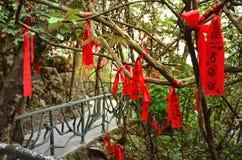 Zhangjiajie Kina - Maj 10, 2017: Detalj av röda band i önskaen Forest Zhangjiajie National Park, Kina Royaltyfri Fotografi