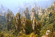 Zhangjiajie lasu państwowy park Fotografia Royalty Free
