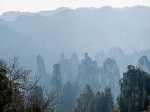 Zhangjiajie medborgare Forest Park i det Hunan Tianzishan Yufeng maximumet Royaltyfri Foto