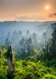 Zhangjiajie medborgare Forest Park på solnedgången, Wulingyuan, Hunan, Royaltyfri Foto