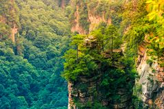 Zhangjiajie medborgare Forest Park, Wulingyuan, Kina Royaltyfri Fotografi