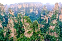Zhangjiajie medborgare Forest Park, Wulingyuan, Kina arkivbilder