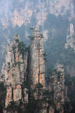 Zhangjiajie mountain peak Stock Images