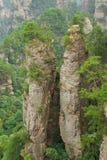 Zhangjiajie mountain. Peaks, like a tall wall, like a tall stone pillars, like a piece of peaks woods Royalty Free Stock Photo
