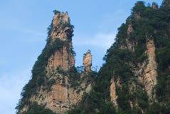 Zhangjiajie mountain. Peaks, like a tall wall, like a tall stone pillars, like a piece of peaks woods Stock Photography