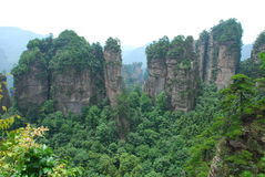 Zhangjiajie mountain. Some like a wall, some like a tall column, some like a piece of stone composition of the forest Royalty Free Stock Photography