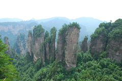 Zhangjiajie mountain. Some like a wall, some like a tall column, some like a piece of stone composition of the forest Royalty Free Stock Photos