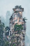 Zhangjiajie mountains, China royalty free stock photo