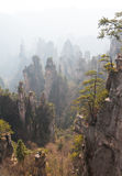Zhangjiajie Mountains China Stock Photography