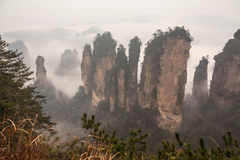 Zhangjiajie mountains. Stock Photo