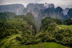 Zhangjiajie mountains. Wulingyuan national forest park in Hunan province, China Royalty Free Stock Photo