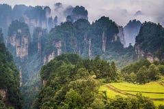 Zhangjiajie mountains. Wulingyuan national forest park in Hunan province, China Royalty Free Stock Photography