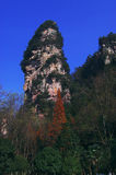 Zhangjiajie National Forest Park Stock Photography