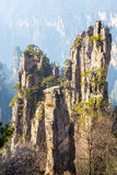Zhangjiajie National forest park China Royalty Free Stock Images