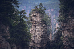 Zhangjiajie National Forest Park, China. Scenic view of rock pillars with green foliage in the Zhangjiajie National Forest Park, China Royalty Free Stock Photography