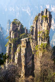 Zhangjiajie National forest park China Stock Photo