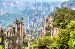 Zhangjiajie National Forest Park. Gigantic quartz pillar mountains rising from the canyon during summer sunny day. Hunan, China.  royalty free stock photos