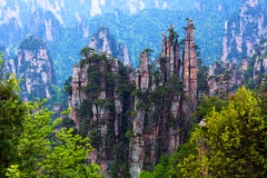 Zhangjiajie National Forest Park in Hunan Province, China Royalty Free Stock Image
