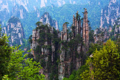 Zhangjiajie National Forest Park in Hunan Province, China. The Emperor's Writing Brushes peaks at Tianzishan (Tianzi Mountain Nature Reserve) in Zhangjiajie Stock Images