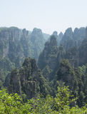 Zhangjiajie National Forest Park Stock Images