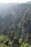 Zhangjiajie National Forest Park Stock Image