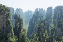 Zhangjiajie National Forest Park Stock Photo
