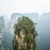 Zhangjiajie National forest park. Top of rock column (Avatar rocks). Zhangjiajie National Forest Park , UNESCO World Heritage Site - China royalty free stock photography