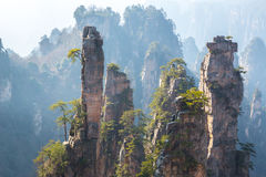 Zhangjiajie National forest park Stock Photos