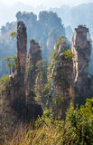 Zhangjiajie National forest park Royalty Free Stock Image