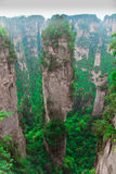 Zhangjiajie National Park, Avatar Hallelujah Mount Stock Photo