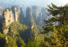 Zhangjiajie National Park, China Stock Photography