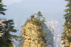 Zhangjiajie National Park. China. Avatar mountains stock photos