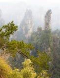 Zhangjiajie National Park. China. Avatar mountains stock photography