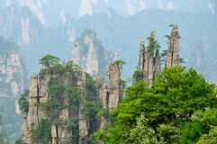 Zhangjiajie National Park in Hunan, China Stock Images