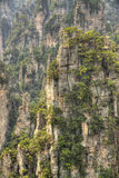 Zhangjiajie national park hunan province Royalty Free Stock Photos