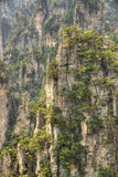 Zhangjiajie national park hunan province Royalty Free Stock Photography