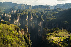 Zhangjiajie national park Stock Photography