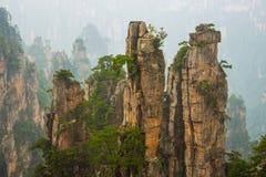 Zhangjiajie nationalpark royaltyfri fotografi