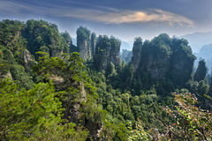 Zhangjiajie naturalna sceneria Fotografia Royalty Free