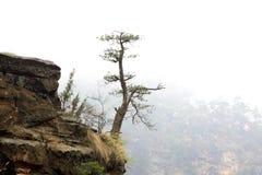 Zhangjiajie scenic area natural scenery, china Stock Image
