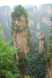 Zhangjiajie southern sky column. In January 25, 2010, Zhangjiajie 'South Tianyi column' (also known as heaven and earth column) was officially renamed the ' Royalty Free Stock Photos