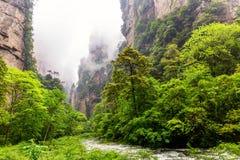 Zhangjiajie-Staatsangeh?riger Forest Park Ber?hmte Touristenattraktion in Wulingyuan, Hunan, China Überraschende Naturlandschaft  lizenzfreie stockfotos