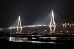 Zhanjiang-Golf-Brücke nachts Stockfotos