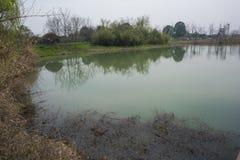 Zhejianghuzhou die het krokodilledorp van Yangtze changxing royalty-vrije stock afbeeldingen