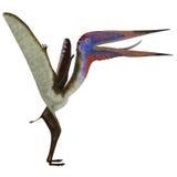 Zhejiangopterus爬行动物 免版税图库摄影