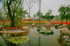 Green Expo Garden in Zhengzhou. The Zhengzhou Green Expo Garden is called the Green Expo Garden of Zhengzhou. It is located in the core area of the New District stock photography