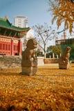 Zhengzhou people' парк s стоковые фотографии rf