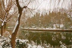 Zhengzhou-people& x27; s-Park Stockfotos